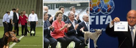 Copa2014_04_Vira_latas
