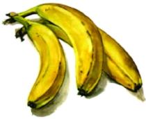 Bananas01