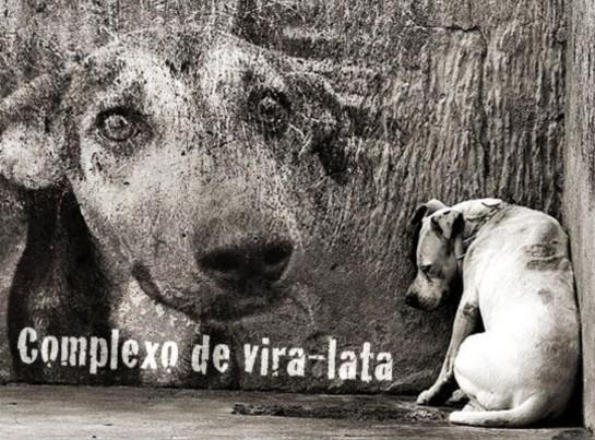 Cachorro_Vira_Lata02