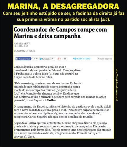Marina_Desagregadora01A
