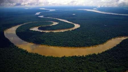 Amazonia05