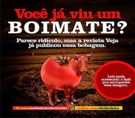 Veja_Boimate04