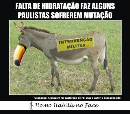 Face_Mutacao01A