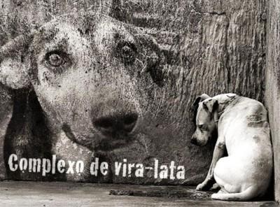 Vira_Lata08