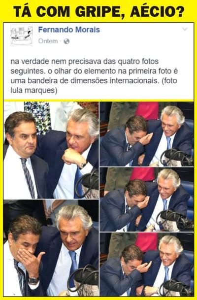 Aecio_Caiado01A_Po